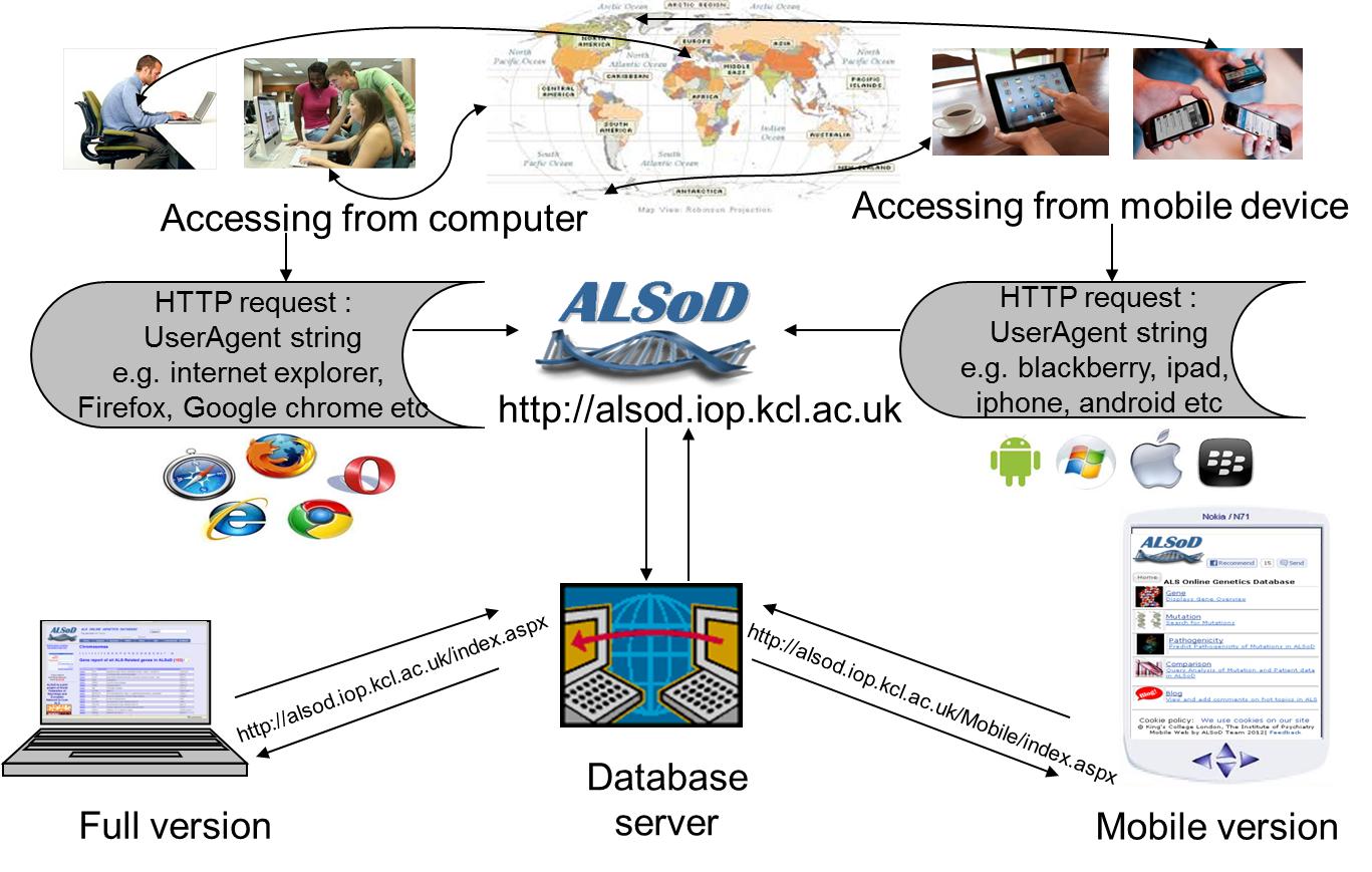 JMU - Development of a Smartphone App for a Genetics Website